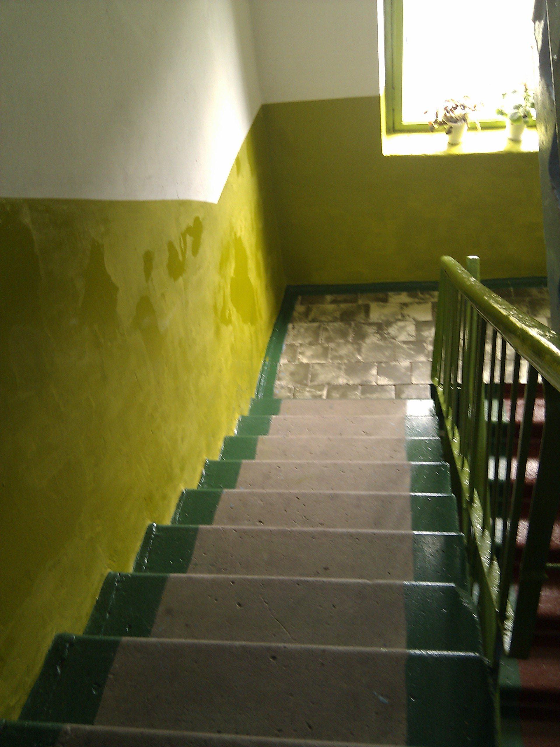 Сочетание цвета стен на лестничной площадке фото